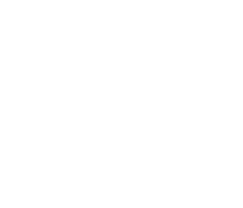 feather icon